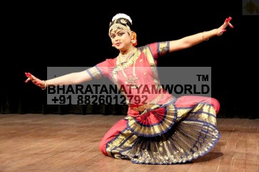 Bharatanatyam Costume Single Fan
