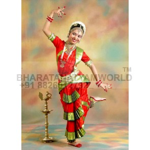 Bharatanatyam Costume Economic YET Customise