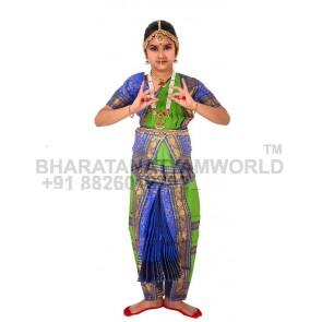Bharatanatyam Readymade Costume Parrot Green And Blue