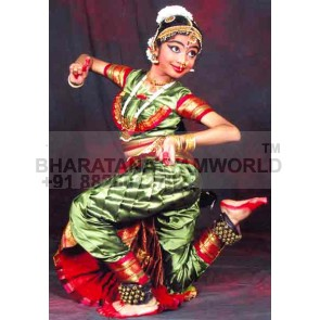 2 Fan 15 Fleates Artificial Silk Bharatanatyam Costume with Blouse Fan