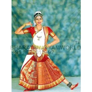 Straight Fan Skirt Pure Silk Bharatanatyam Costume