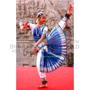 2 Fan 15 Pleats Bharatanatyam Premium Costume