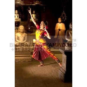 2 Fan 3 Borders Pure Silk Bharatanatyam Costume