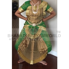 Single Fan Brocade Bharatnatyam Costume