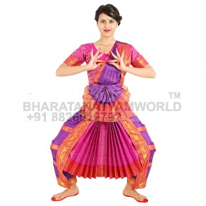 Bharatanatyam Readymade Costume Blue And Pink