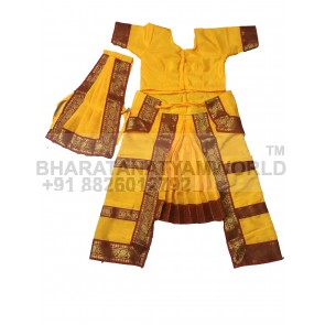 Bharatanatyam Economic Costume