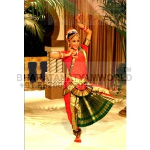 Bharatanatyam Costume 2 FAN